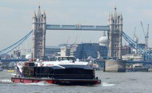 city cruises, client showcase